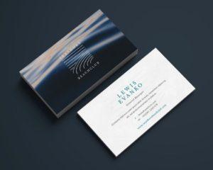 Business Cards Silk 1